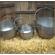 Cauldron - Small Medium and Large